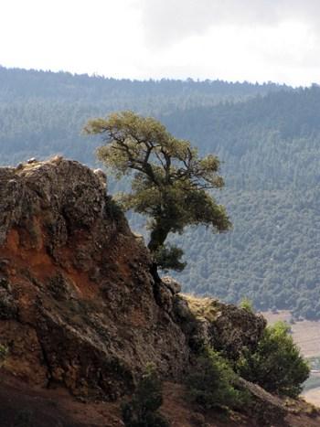 Aussichtspunkt Belvedere de Tizi Oughmari.