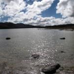 Auch am See Aquelmane Sidi Ali gibt es viele Fische.