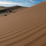 Die Wüste Erg Chebbi.